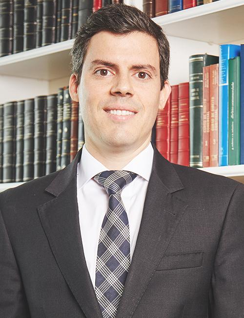 Pedro Wehrs do Vale Fernandes